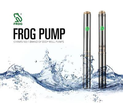 Frog Submersible Pump . 75 KW for Home 1